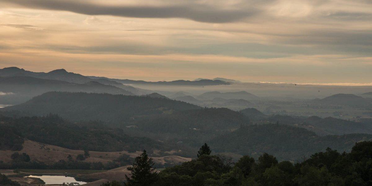 View of La Jota Vineyard from Howell Mountain