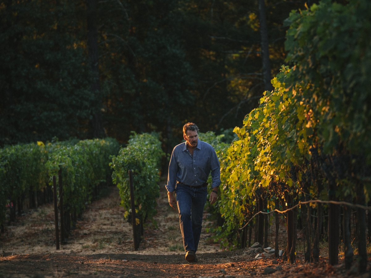 Chris Carpenter walking through a vineyard